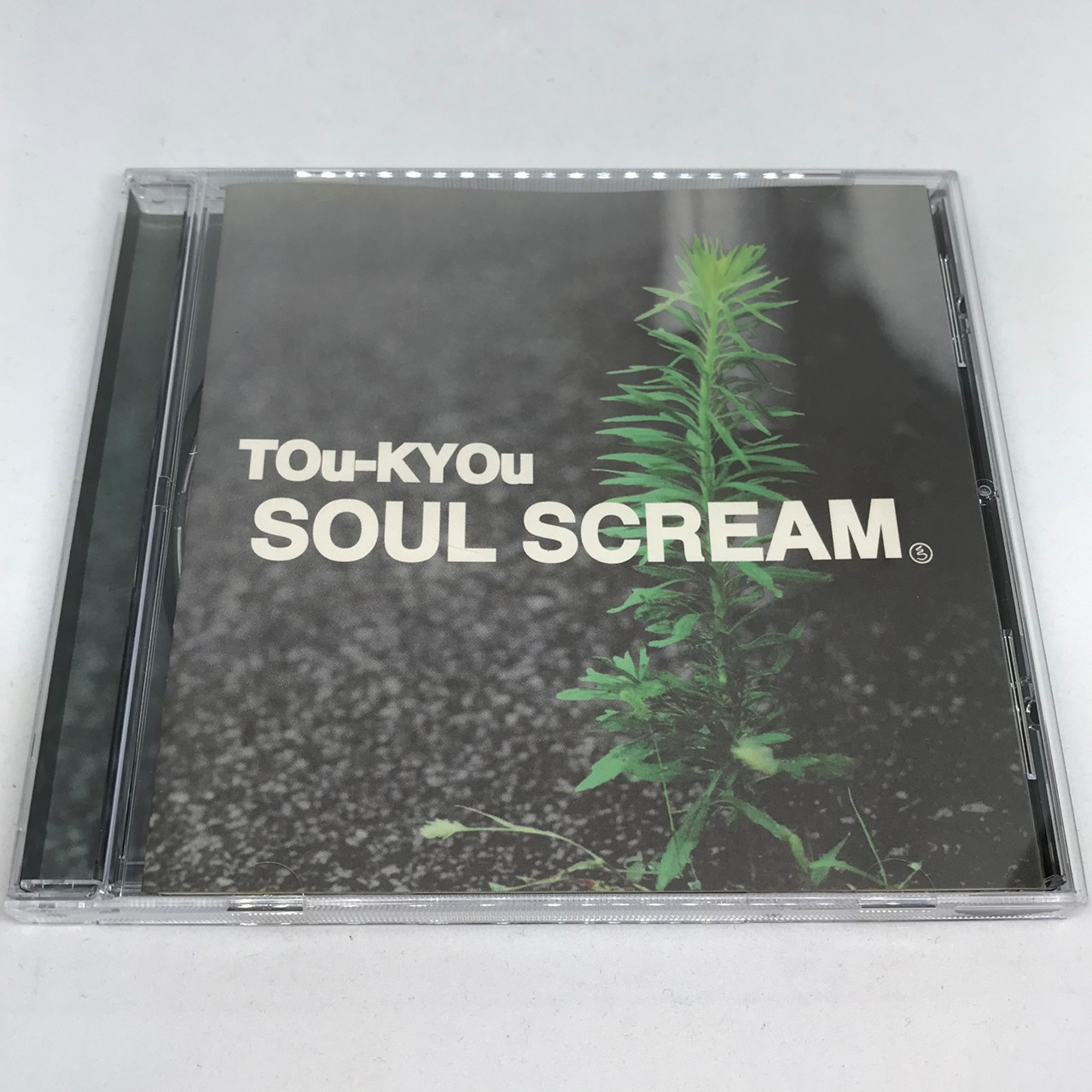 SOUL SCREAM / TOu-KYOu